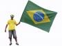 Bandeira Poliester 1,40x1,93